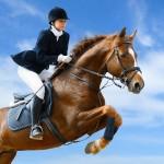Sporturi Care Pot Cauza Apariția Hemoroizilor